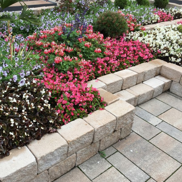 Siola Mini Trockenmauersteine sandstein für Gartenmauer