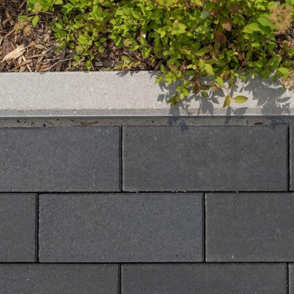 Pflasterstein Lineo basalt mit Glimmer 40x20x8 cm
