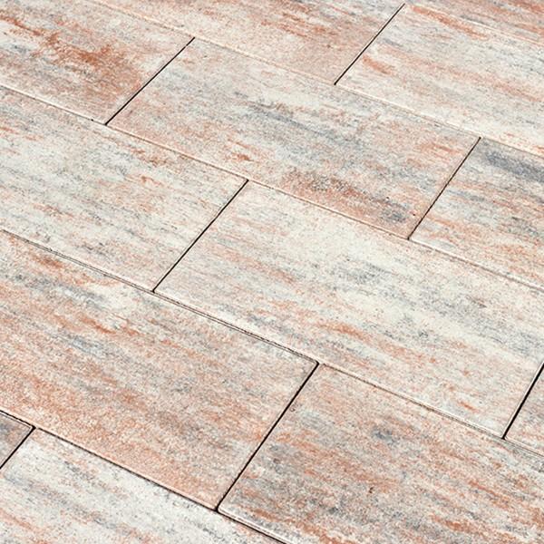 Terrassenplatte Diora muschelbeige 60x30x5cm