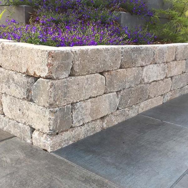 Mauerstein Antik Pico muschelkalk 30x10x10 cm Beetbegrenzung